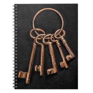 Cuaderno oxidado medieval de las llaves de la anti