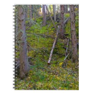 Cuaderno pacífico de los pinos