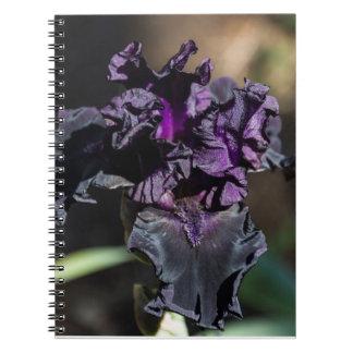 Cuaderno púrpura oscuro del iris