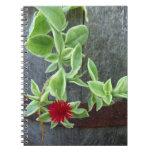 Cuaderno rojo de la flor