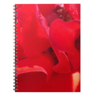 Cuaderno rojo de los pétalos del fuego