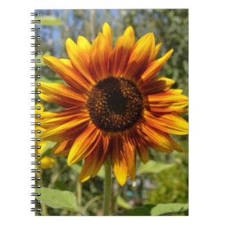 Cuaderno rojo y amarillo del jardín del girasol