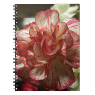 Cuaderno rojo y blanco del clavel