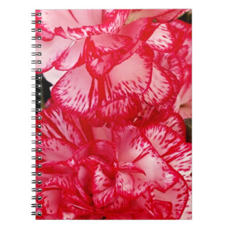 Cuaderno rojo y blanco del Clavel-Espiral