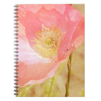 Cuaderno rosado de la amapola de Islandia