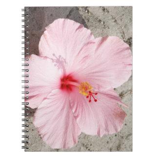 Cuaderno rosado de la foto del espiral de la flor