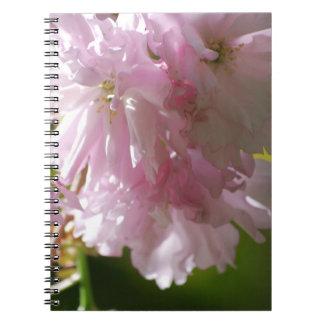 Cuaderno rosado de las flores de cerezo
