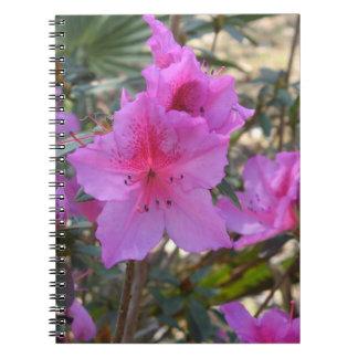 Cuaderno rosado de las flores de las azaleas