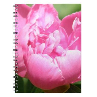 Cuaderno rosado del Peony