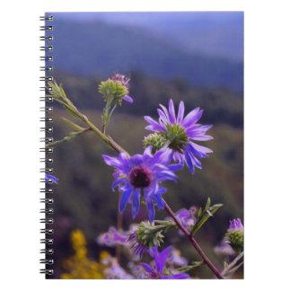 Cuaderno salvaje de los asteres