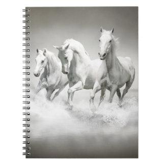 Cuaderno salvaje de los caballos blancos