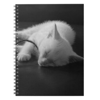 Cuaderno soñoliento lindo estupendo del gatito