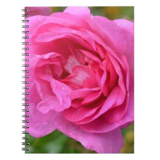 Cuaderno subió noviembre rosado