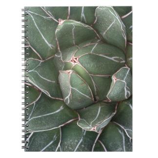 Cuaderno suculento de la foto de la planta (80