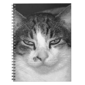 Cuaderno Tabby-y-Blanco del gato