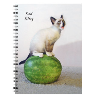 Cuaderno triste del gatito
