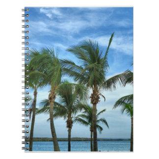 Cuaderno tropical de la tarde