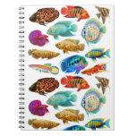 Cuaderno tropical de los pescados del acuario