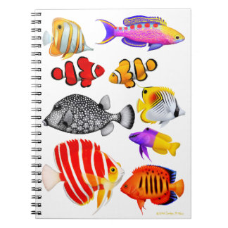 Cuaderno tropical de los pescados del filón del