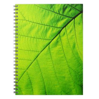 Cuaderno verde de la hoja