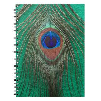 Cuaderno verde de la pluma del pavo real