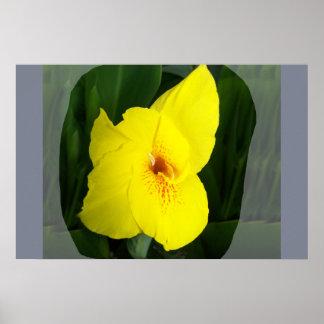 Cuadrado amarillo del naranja de la flor posters