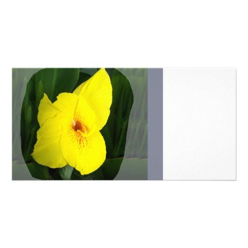 Cuadrado amarillo del naranja de la flor tarjeta con foto personalizada