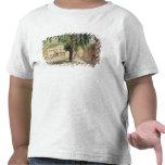 Cuadrado comercial, la biblioteca comercial y camisetas