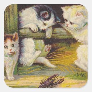 Cuadrado curioso del gato de los gatitos de la pegatina cuadrada