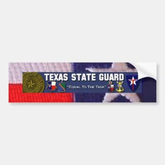 Cuadrado de la bandera de TX, licencia plt de TXSG Etiqueta De Parachoque