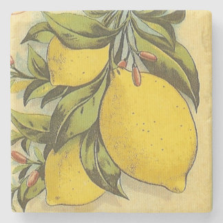 Cuadrado delicioso de los limones posavasos de piedra