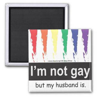 Cuadrado gay del imán del marido