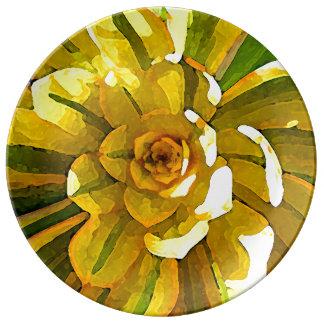 Cuadrado suculento del Aeonium del resplandor Plato De Cerámica