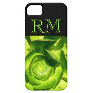 Cuadrado suculento del Aeonium verde del Amy Funda Para iPhone SE/5/5s