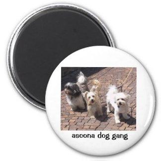 cuadrilla del perro del ascona imán redondo 5 cm