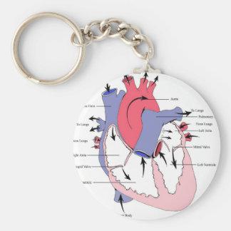 Cuadro 2. corazón normal Function.jpg Llavero Personalizado