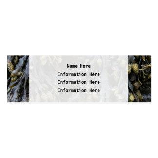 Cuadro de la alga marina tarjetas de visita mini