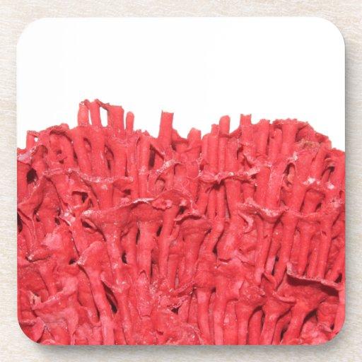 Cuadro del coral rojo posavaso