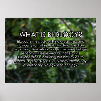 ¿Cuál es biología? Poster