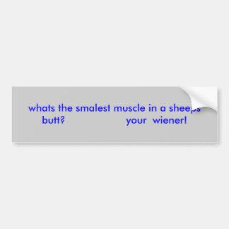 ¿cuál es el músculo más smalest de un extremo de l pegatina para auto