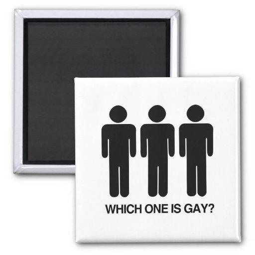 CUÁL ES GAY - .PNG IMÁN DE FRIGORÍFICO