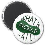 ¿Cuál es pickleball? Idea del regalo de la diversi Imanes