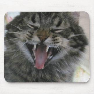 ¿Cuál es tan divertido?  Soy un gato que usted no Tapetes De Ratón