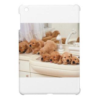 ¿Cuál es un baño? Los perritos lindos descubren Ba