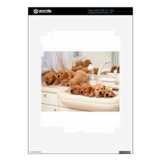 ¿Cuál es un baño? Los perritos lindos descubren Ba Calcomanías Para iPad 2