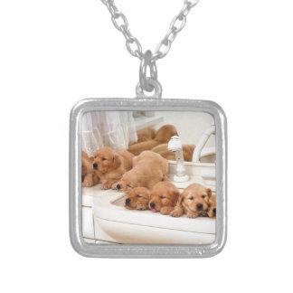 ¿Cuál es un baño? Los perritos lindos descubren Ba Colgante Cuadrado