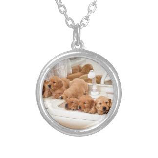 ¿Cuál es un baño? Los perritos lindos descubren Ba Colgante Redondo