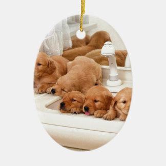 ¿Cuál es un baño Los perritos lindos descubren Ba Adornos