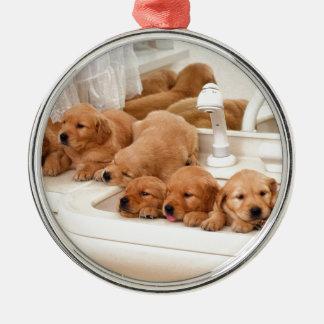 ¿Cuál es un baño Los perritos lindos descubren Ba Ornamento Para Arbol De Navidad