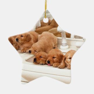 ¿Cuál es un baño Los perritos lindos descubren Ba Ornatos